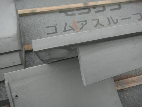 DSC04743.JPG